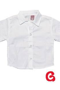 Camisa bb poplin liso mc -