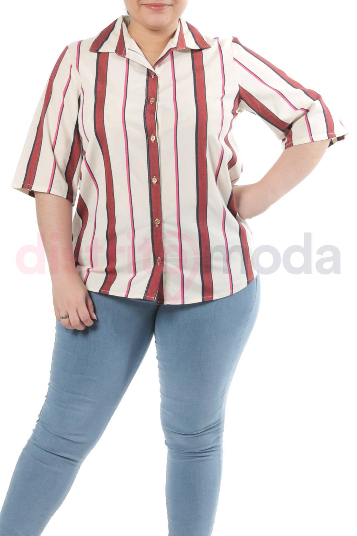 Imagen producto Camisa Lino Rayado 0